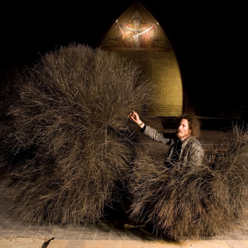Nacho Carbonell - Diversity N° 18 - Bush of Iron