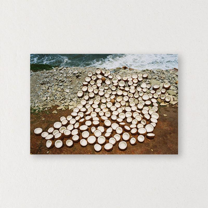 Tatiana Uzlova - Coconut Siesta
