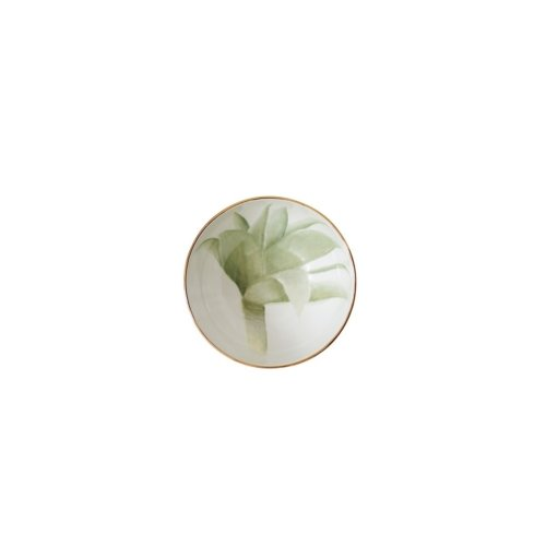 Benedetto Fasciana - C4 - Il cactus di Vulcano
