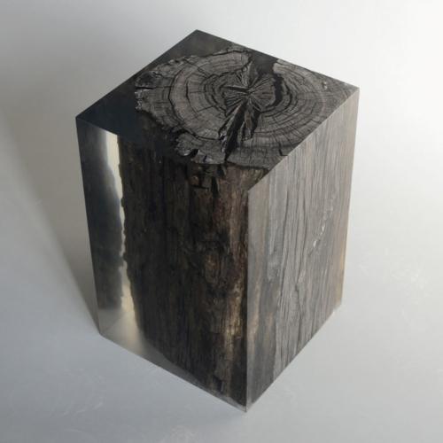 Alcarol - Peatland Black Stool