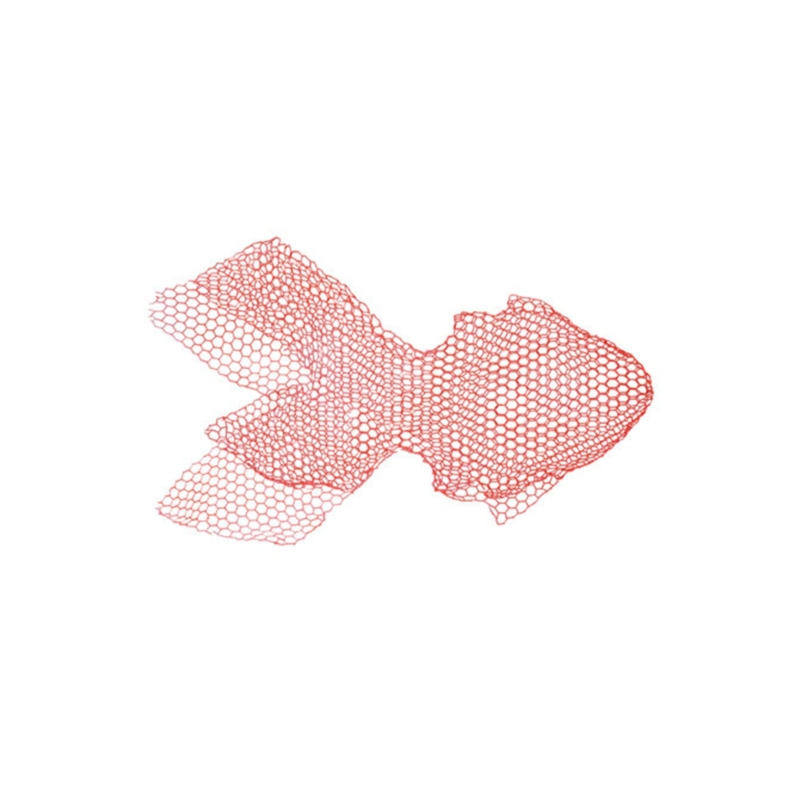 Benedetta Mori Ubaldini - Red Fish