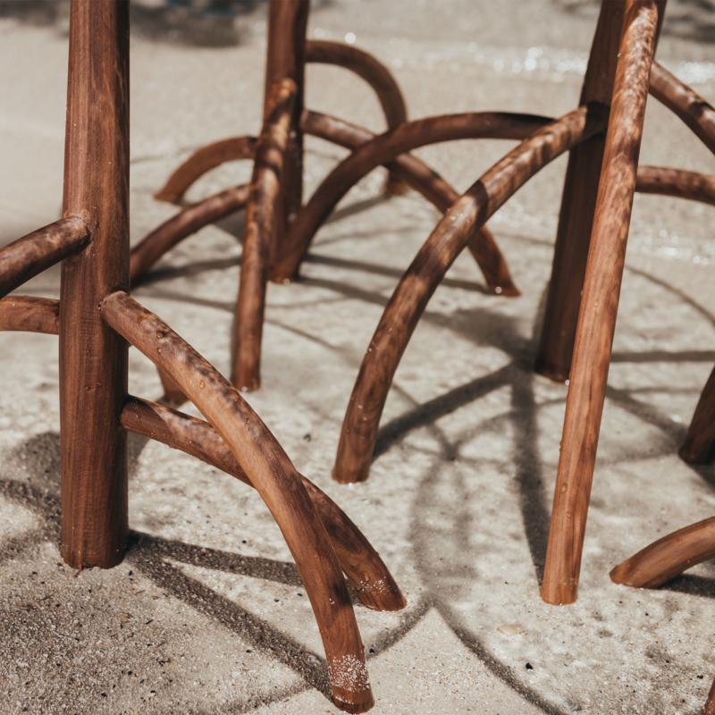 Cypraea - Mangrovia Low Table Walnut set